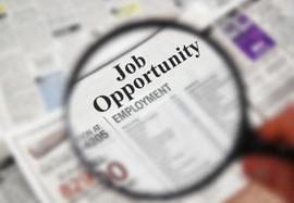 Job advert in newspaper