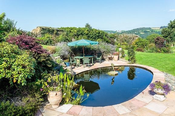 Garden pond view